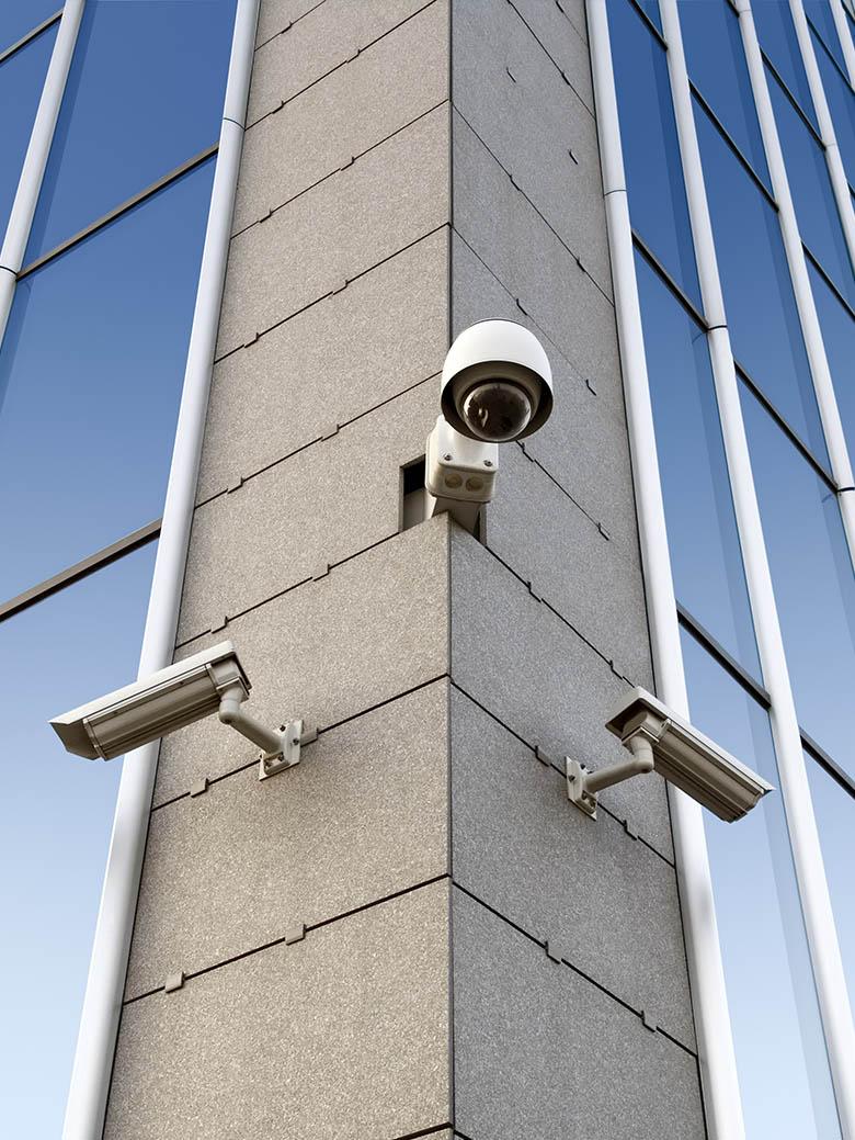 servicii de securitate si paza companii